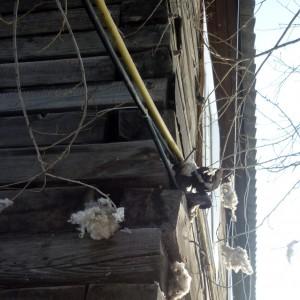 Наблюдение за трещинами и деформациями в деревянных зданиях